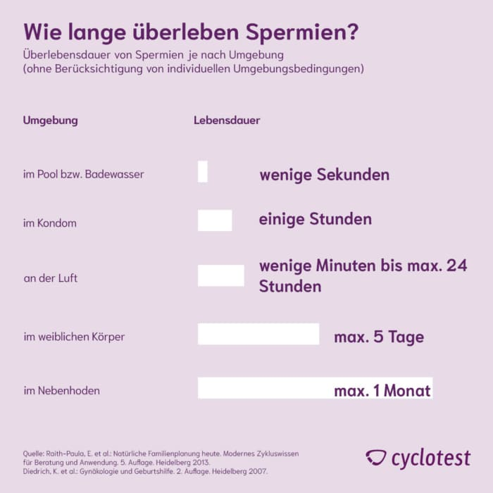 Wie lange überleben Spermien? ⏱ | cyclotest