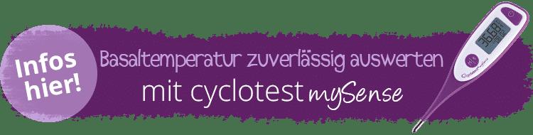 Zuverlässig die Temperatur auswerten mit cyclotest mySense.
