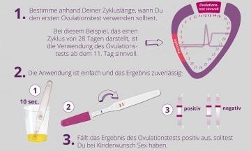 Die richtige Anwendung des cyclotest Ovulationstests.