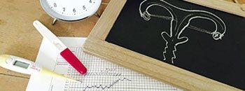 fruchtbare tage berechnen eisprungrechner. Black Bedroom Furniture Sets. Home Design Ideas