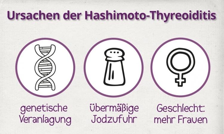 Die drei häufigsten Ursachen der Hashimoto-Thyreoiditis..