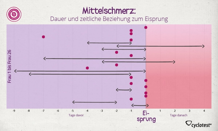 Die Grafik zeigt den Zusammenhang zwischen Mittelschmerz und Eisprungzeitpunkt.
