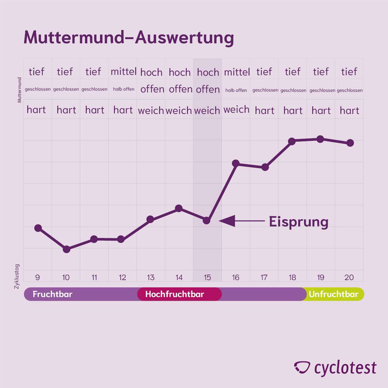 Fingern muttermund Kurz erklärt: