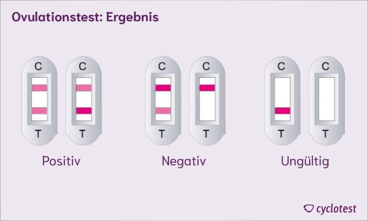 Die Ergebnisse eines Ovulationstests: positiv, negativ oder ungültig.