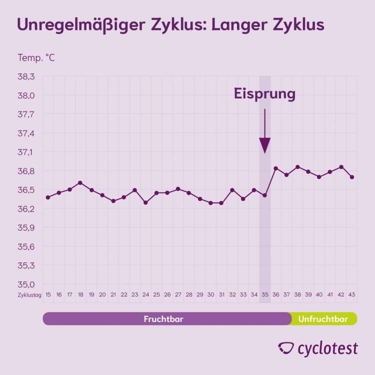 Die Grafik zeigt einen sehr langen unregelmäßigen Zyklus.