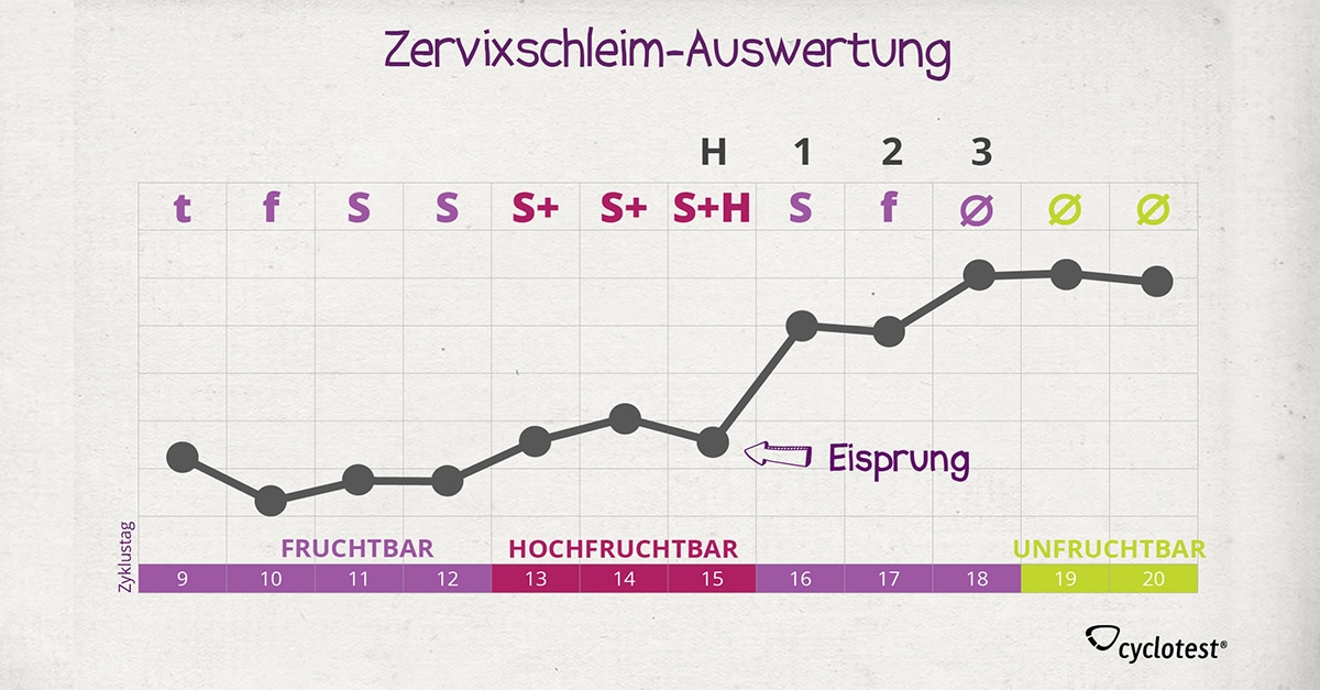 Schwangerschaftstest Und Pille