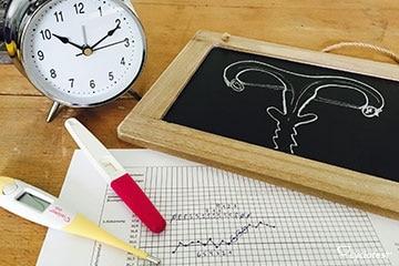 NPF umfasst die Dokumentation und Auswertung von Basaltemperatur, Zervixschleim und Muttermund.